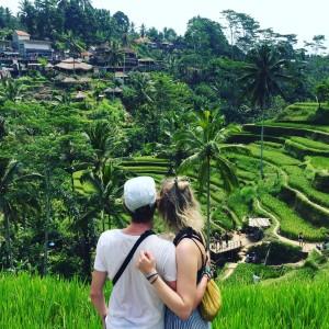 rice-terrace-1-300x300